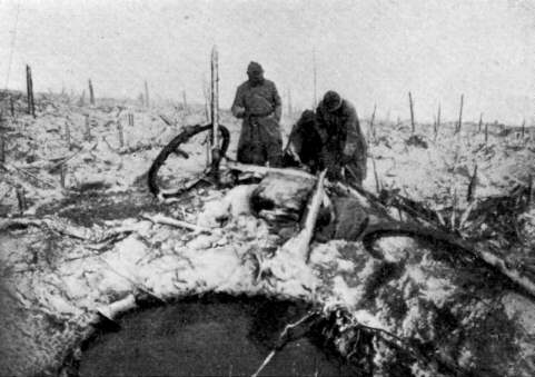 The destruction around Haudraumont Wood (Verdun).
