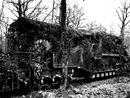 A massive rail gun camouflaged in the woods.