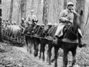 A wine ration is brought up along a small-gauge rail, pulled by a team of horses.